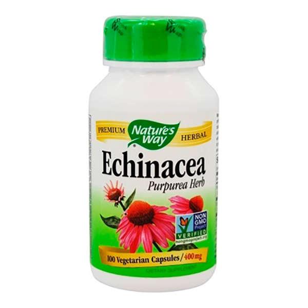 las mejores vitaminas para no enfermar equinacea