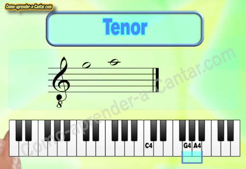 notas tenor
