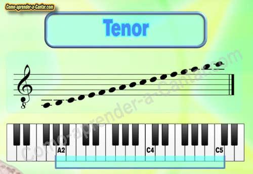voz aguda masculina tenor